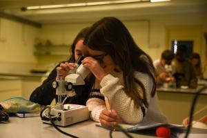 Educació secundària obligatòria laboratori