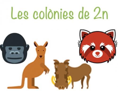 Colònies 2n, curs 2018-2019
