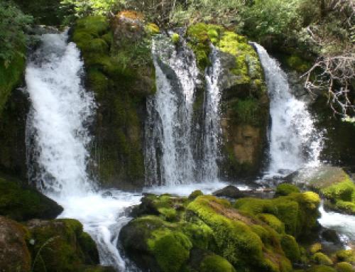 Passegem per Catalunya fent rutes respectant l'entorn